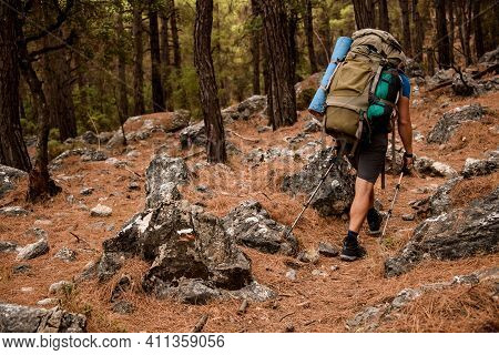 Rear View On Man Tourist Walking By Lycian Way Along Cairn Marking Trail In Forest