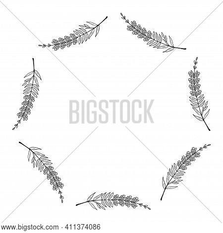Snapdragon Antirrhinum Majus , Dragon Flowers, Medicinal Plant In Sketch Style. Hand Drawn Botanical