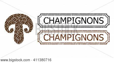 Collage Champignon Mushroom United From Coffee Seeds, And Grunge Champignons Rectangle Seal Stamps W