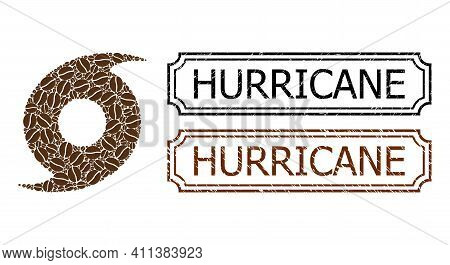 Collage Hurricane Composed Of Cocoa Seeds, And Grunge Hurricane Rectangle Seals With Notches. Vector