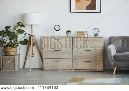 Background Image Of Minimal Home Interior Decorated With Plants, Focus On Wooden Cabinets, Copy Spac