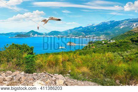 Panoramic Landscape Of Budva Riviera In Montenegro