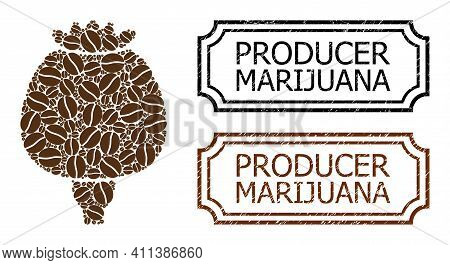 Mosaic Opium Poppy Organized From Coffee Beans, And Grunge Producer Marijuana Rectangle Stamps With