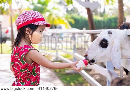 Girl Wearing Orange Cloth Face Mask Visits Goat Farm. Child Carried Small Bottle Feed Milk To Animal