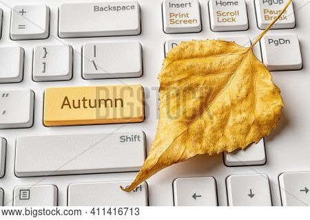 Yellow Key With Autumn Word And Fallen Leaf On A White Computer Keyboard. Autumn Sales, Holidays, Sc