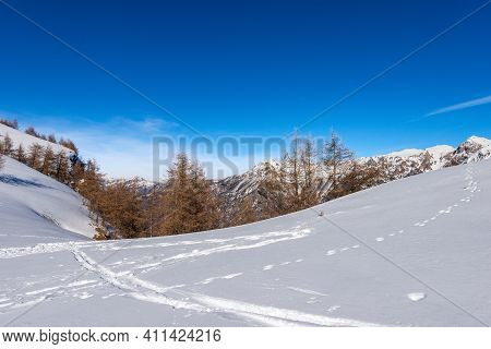 Mountain Range Of The Monte Carega In Winter With Snow, Called Small Dolomites (piccole Dolomiti) Fr