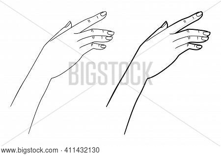 Gestures. Graceful Hand Of A Woman. Graphic Line Drawing. Vector Illustration.
