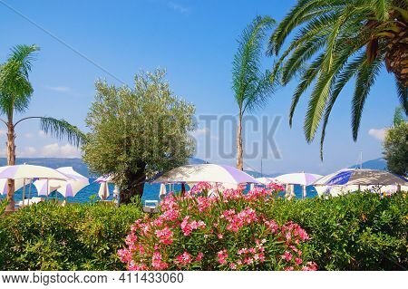 Beautiful Mediterranean Landscape,  Summer Vacation Concept.  Montenegro,  Tivat City