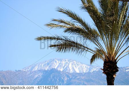 Rugged Mountains Including Snow Capped Mt San Jacinto Taken From The Colorado Desert With Palm Trees