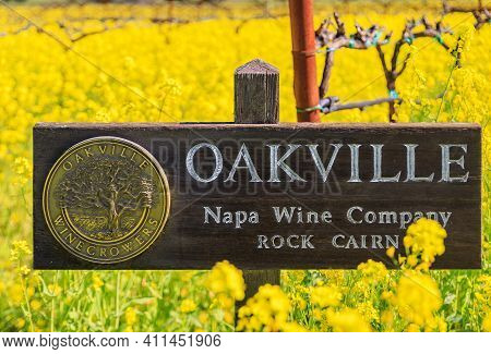 Yountville, Usa - February 27, 2021: Yellow Mustard Flowers Between Grape Vines At The Nickel And Ni