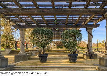 Rutherford, Usa - February 27, 2021: Outdoor Pergola In Front Of Grape Vines At The Francis Ford Cop