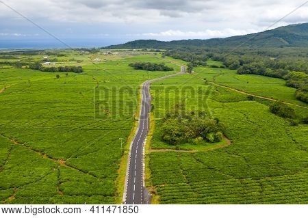 Aerial View From Above Of A Road Passing Through Tea Plantations On The Island Of Mauritius, Mauriti