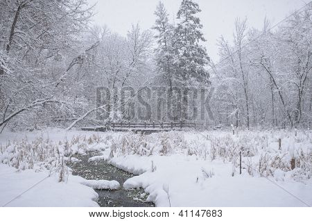 Snow Falling In The Woods Over A Bridge And Creek During The First Winter Storm Of The Season.