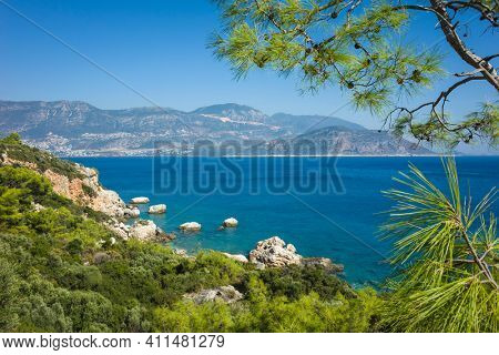 Mediterranean sea coast, Nature of Turkey, bright green pine tree branches on foreground, Kalkan town seen in the distance, View from Lycian way hiking trail