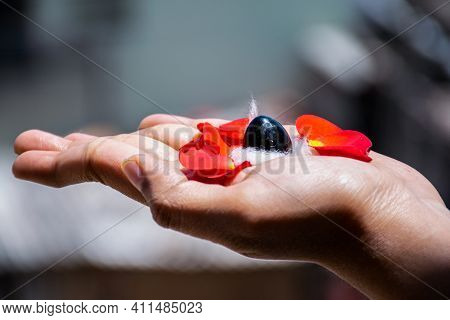 Stock Photo Of A Man Holding And Worshiping Shivlinga Which Is Icon Of Lord Shiva On The Occasion Of