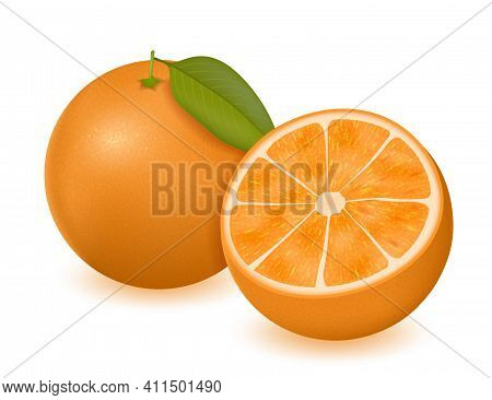 Orange Vector Illustration. Fresh Ripe Orange With Leaves. Realistic Citrus Fruit.