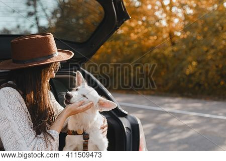 Road Trip With Pet. Stylish Woman Caressing Cute White Dog In Car Trunk At Sunny Autumn Road