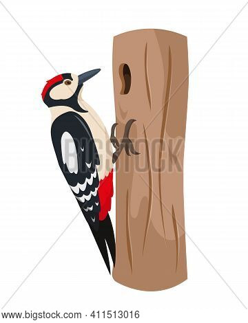 Woodpecker Bird On Tree Trunk. Colorful Woodland Animal Icon. Vector Illustration Isolated On White