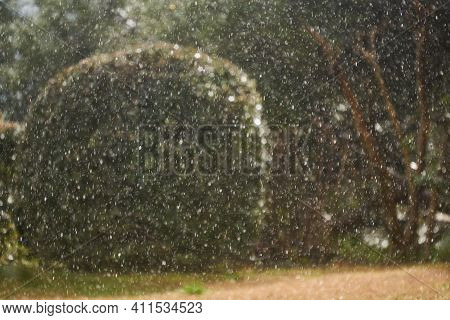 Blurred Background - Sudden Snowfall In A Subtropical Park, Bushes And Trees Are Guessed In The Back