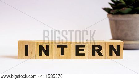 The Word Intern On Wooden Cubes On A Light Background Near A Flower In A Pot. Defocus