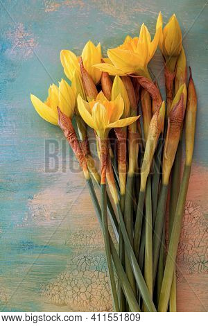 Art Photography Of Daffodils Flowers. Shallow Depth Of Field. Yellow Daffodils On A Wooden Table. To