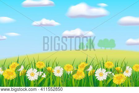 Spring Landscape Rural Countryside, Blooming Daisies Dandelions, Rural Nature. Panorama Springtime G