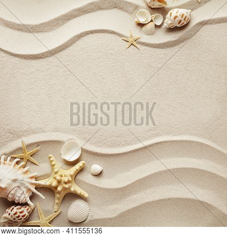 Sandy beach background top view with visible sand texture. Backdrop for mockups and advertising. sandy beach background with seashells. copy space for text