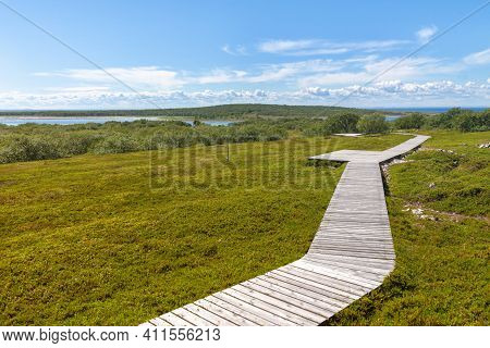 Peaceful Nature Island Wooden Wandering Walk Way. Wild Travel Concept.