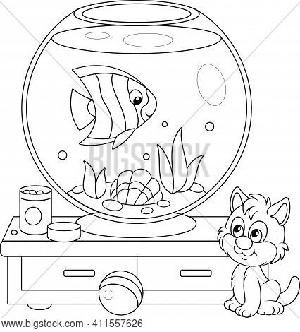 Cute Playful Kitten Watching A Funny Striped Butterfly Fish Swimming In A Home Round Home Aquarium W