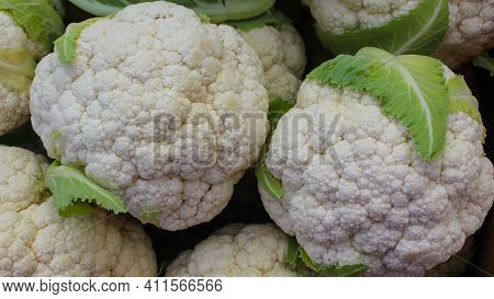 Group Of Fresh Cauliflower With Green Leaves At The Vegetable Market. Close-up Of Fresh Raw Cauliflo