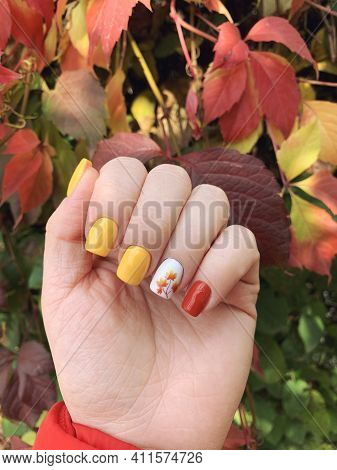 Beautiful Autumn Manicure Design On Well-groomed Female Nails. Soft Square Shape. Fall Leaves