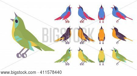 Songbird Set, Various Singing Little Musical Birds In Beautiful Colors. Wildlife Study, Ornithology,