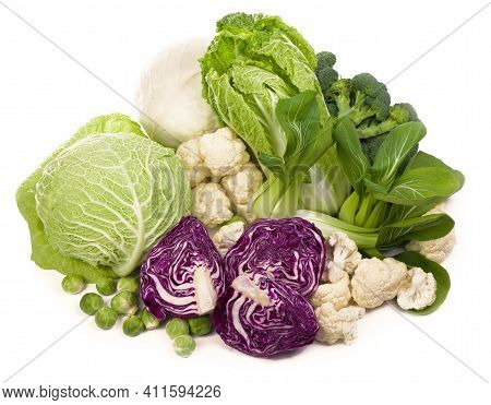 Mix Of Cabbages On White Background: White Cabbage, Red Cabbage, Savoy Cabbage, Roman Cabbage
