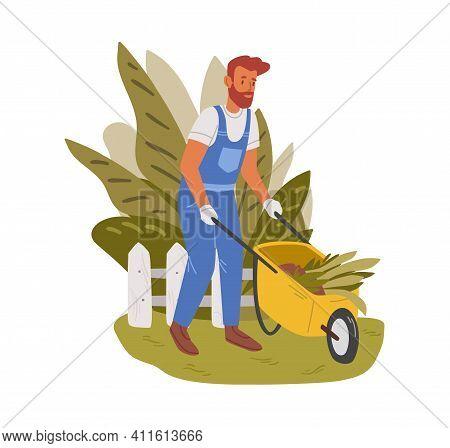 Gardener Working In Garden In Summer. Male Handyman Carrying Wheelbarrow And Cleaning Backyard. Colo
