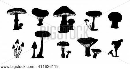 Silhouette Set Of Mushroom. Various Mushrooms Hand Drawn Shape. Champignon, Chanterelle And Shiitake