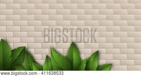 Realistic Green Leaves Cast A Beautiful Shadow On The Beige Brickwork. Place For Your Text. Texture