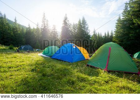 Camping and tents in the forest at sunset