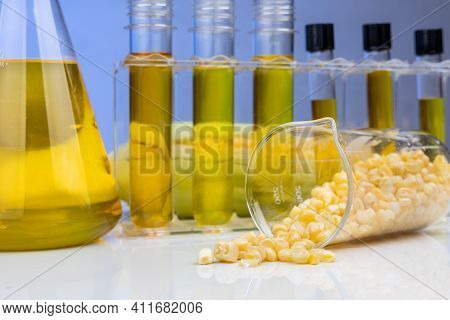 Close-up Of Ethanol Biofuel Derived From Corn Maze With Beaker Test Tubes In Laboratory