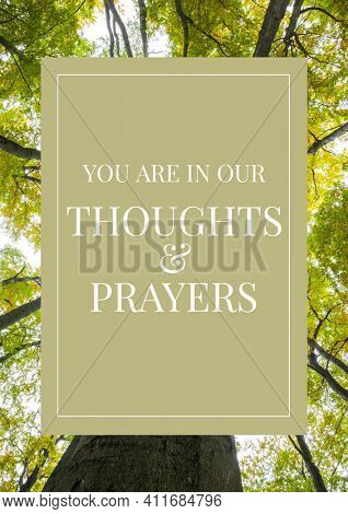 You are in our thoughts and prayers text on green rectangle over forest in background. best wishes and support concept digitally generated image.