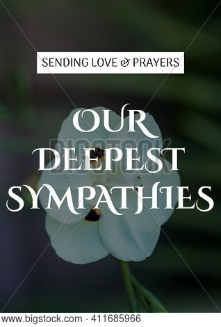Sending love and prayers our deepest sympathies text with white flower in background. condolences and support concept digitally generated image.