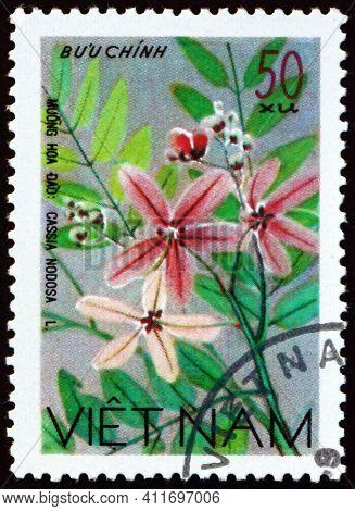 Vietnam - Circa 1977: A Stamp Printed In Vietnam Shows Cassia Javanica, Cassia Nodosa, Is A Species