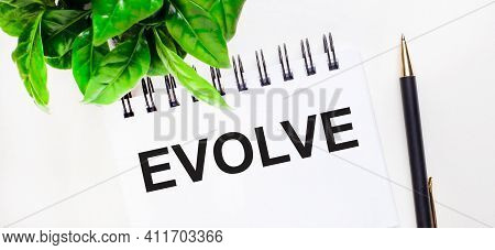 On A White Background A Green Plant, A White Notebook With The Inscription Evolve And A Pen