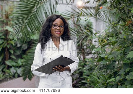 Greenhouse And Tropic Plants. Young Attractive African Woman Scientist Inspecting Plants Growing In