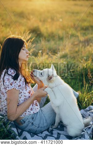 Happy Woman Training Cute White Puppy To Behave In Summer Meadow In Sunset Light. Vacation With Pet
