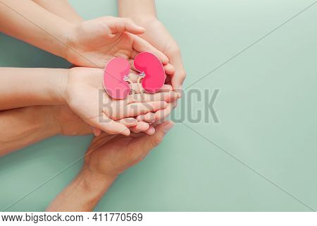 Adult And Child Holding Kidney Shaped Paper On Textured Blue Background, World Kidney Day, National