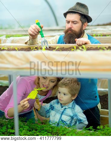 Greenhouse Family. Green House Structure Factory, Happy People In Garden Greenhouses