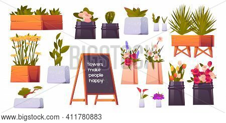 Flower Shop Set, Potted Plants And Bonsai Isolated On White Background, Floristic Store Interior Ite