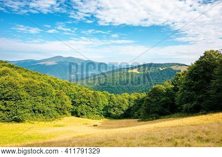 Forest And Meadow On The Hill. Beautiful Carpathian Mountain Landscape In Summer. Blyznytsya Peak In