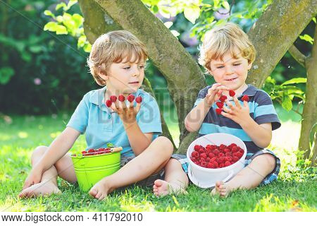 Two Little Friends, Kid Boys Having Fun On Raspberry Farm In Summer. Children Eating Healthy Organic