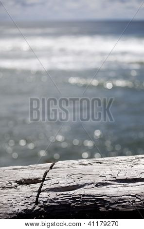 A log with an abstract ocean background and sky. poster